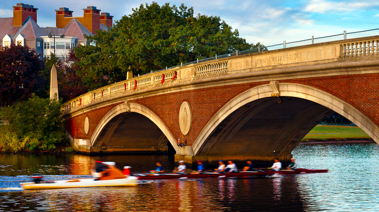 People rowing under a bridge on the Charles River