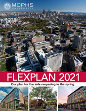Cover image of Flexplan 2021 PDF